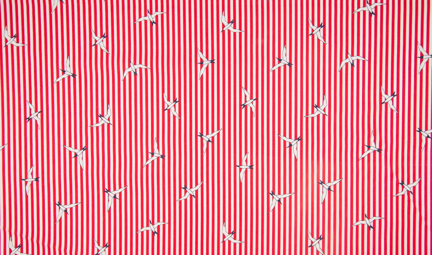 Seagull - Stripes - red-white