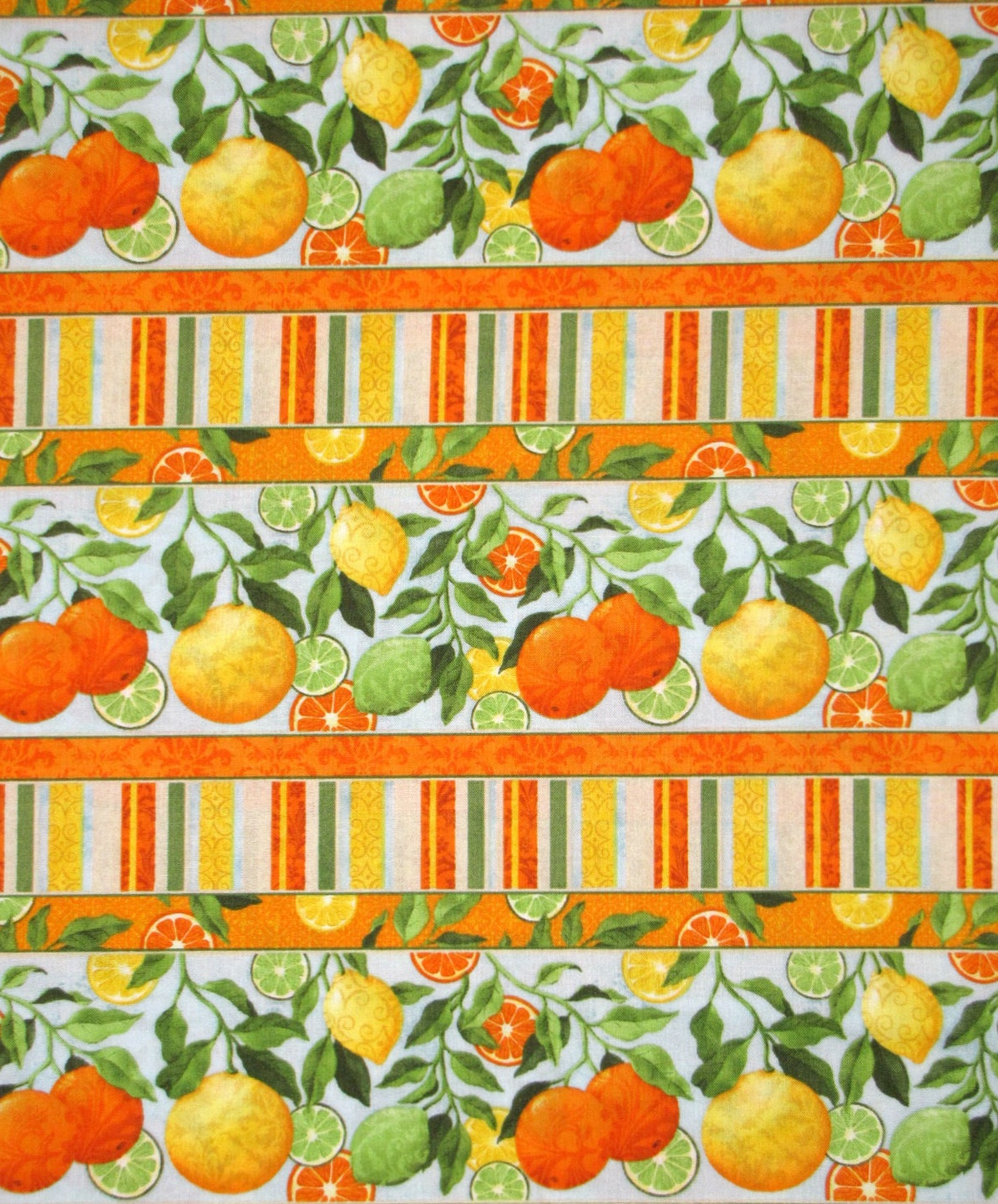 Citrus Grove - Border Stripe - multi