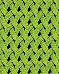 Brush Dance - Basket Weave - lime