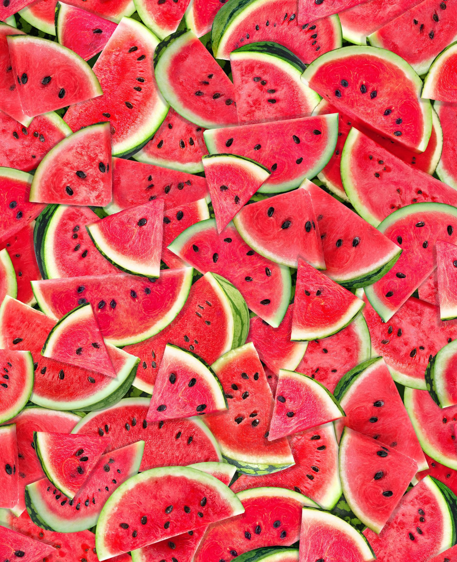 One in a Melon - Packed Watermelon Slices